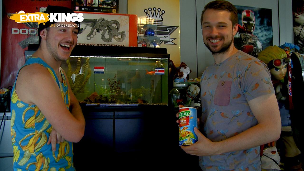 Gamekings Extra: Redactie-vissen voorspellen Nederland - Costa Rica