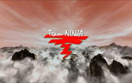 Team Ninja